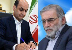 ترور بی شرمانه دانشمند هسته ای رشد و پیشرفت ایران را نشانه گرفته است