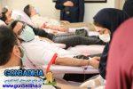اهدای خون بیش از ۱۱ هزار نفر از طریق پایگاه انتقال خون گنبدکاووس